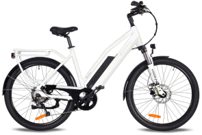 Rook Electric Cruiser Bike